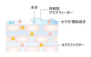 「持続型アクアフィーダー」の肌への効果の説明図