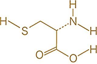 L-システインの元素記号