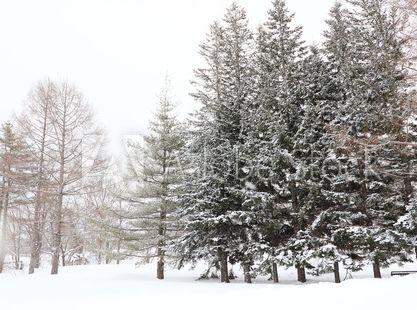 寒い地域の風景