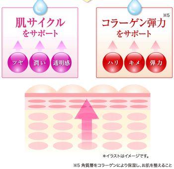 EGFによる肌サイクル、コラーゲンサポートの効果の説明図