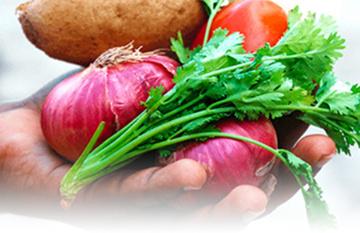 ココノミで提供されているお野菜