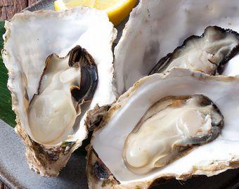 亜鉛の豊富な牡蠣