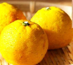 柚子種子湯が抽出できる柚子