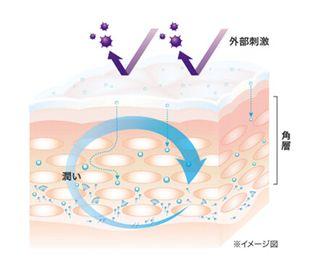 バリア機能、肌本来の保水機能回復で丈夫な素肌の説明図