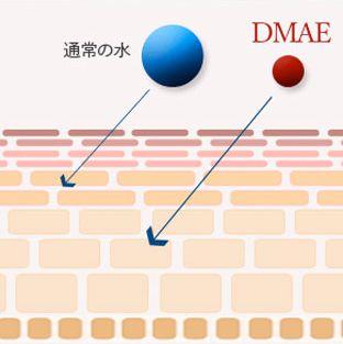 DMAEなどの有効成分が肌内部へしっかりと浸透する説明図