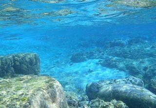 海洋由来成分が採れる海洋の様子