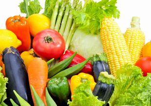 栄養豊富な多くの野菜