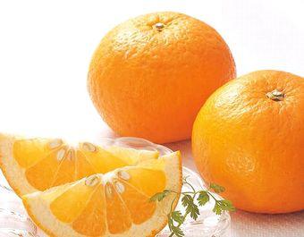 柑橘類のフルーツ