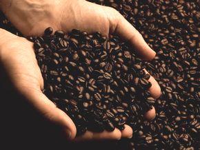 シングルオリジンの高品質なコーヒー豆
