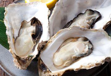 亜鉛が豊富な牡蠣