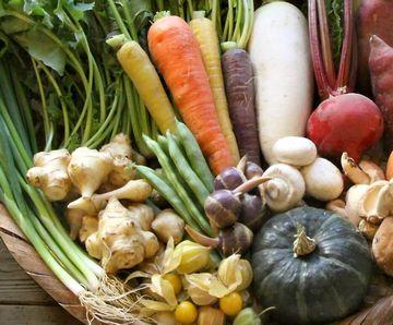 体を温める冬野菜