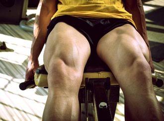 筋肉が多くついている太もも