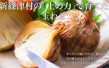 北海道 中村さんの玉ねぎ