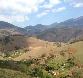 栽培地である大自然の広がるブラジルの風景