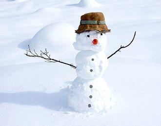 冬の風景(雪だるま)
