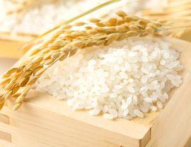 米発酵液や米ぬか酵素分解エキスが抽出できるお米
