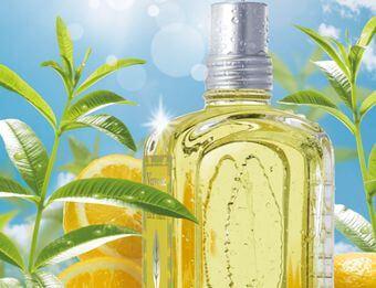 シプレ系の香り、香水のイメージ