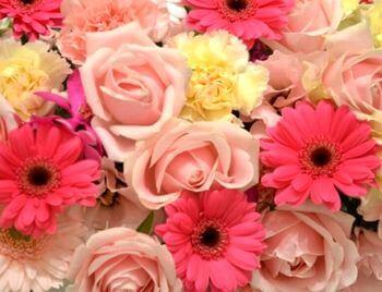 フローラル系の香り、香水のイメージ
