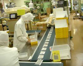 HACCP対応の工場において製造している様子