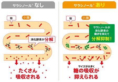 サラシノールによる効果の説明図