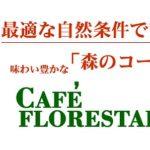 銀座カフェーパウリスタ【森のコーヒー】倶楽部、老舗名店人気No.1のコーヒーが自宅で手軽に!その味わいや特徴、口コミは?