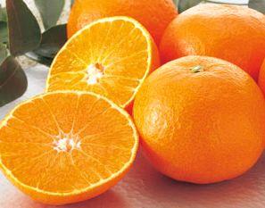 ビタミンC豊富なオレンジ
