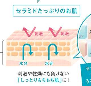 肌へとセラミドを補給した効果の説明図