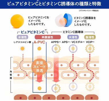 ピュアビタミンCの肌への浸透性と働きの説明図