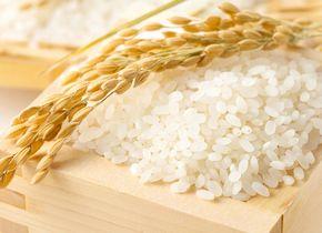 米ぬかが抽出できるお米