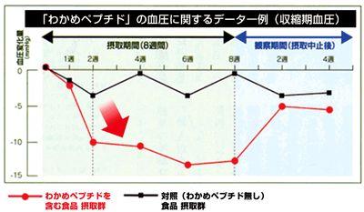 わかめペプチドの血圧への作用のグラフ