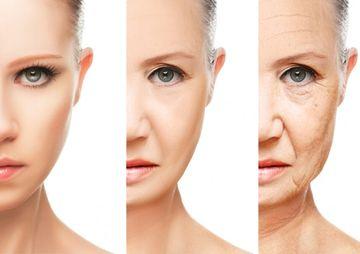たるみやしわなどの肌老化の段階