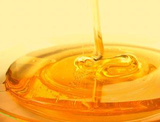 保湿力の高いハチミツ