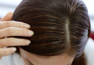 白髪が生えた女性の頭髪