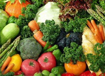 酵素が抽出できる野菜や薬草の数々