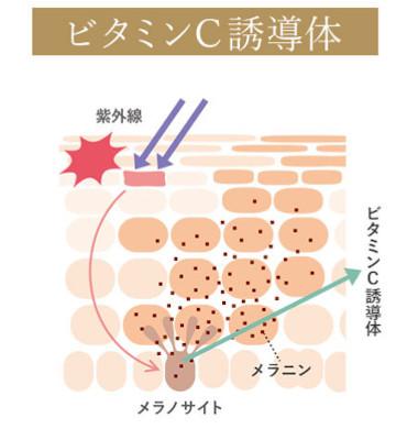 ビタミンC誘導体による美白効果の説明図